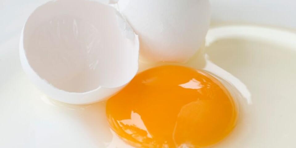 Krossade ägg.