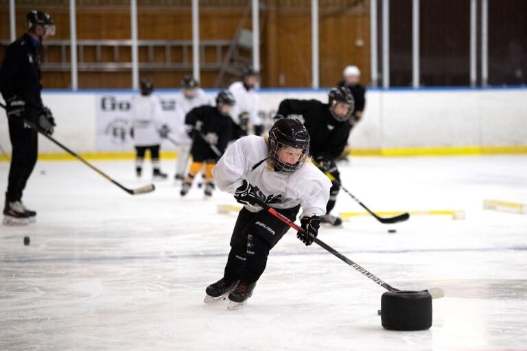 Hockey på sportlovet tack vare Lions bidrag