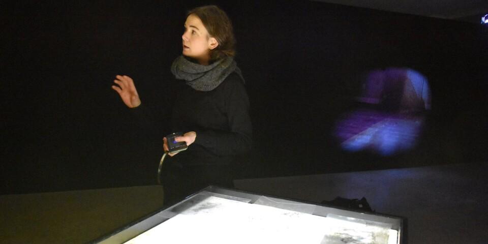 """Elin Maria Johanssons utställning """"Svärm"""" är en upplevelse för mer än ett sinne. Bild och ljud i förening skapar en suggestiv stämning."""