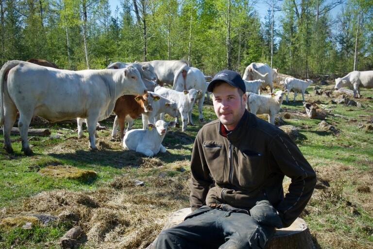 Färska bönder årets nötköttsföretag i Kronoberg