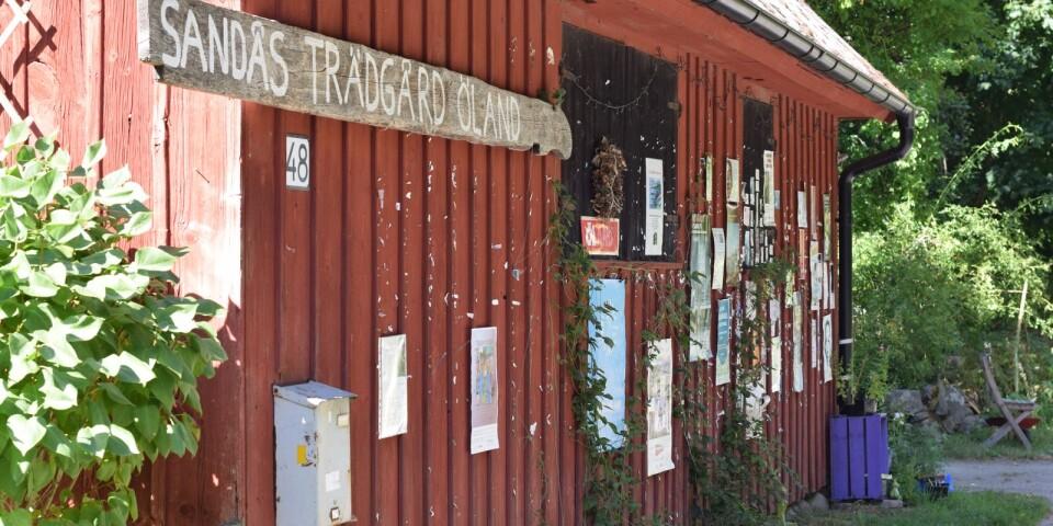 Det är svårt att inte lägga märke till Sandås Trädgård Öland när man kör förbi i det lugna bostadsområdet.