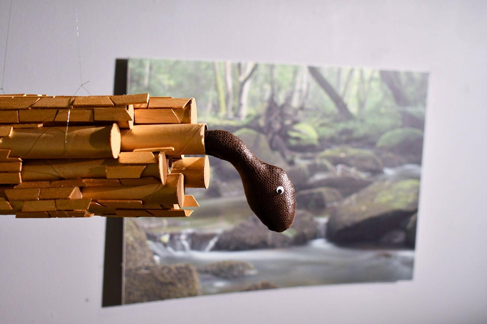 Naturbilder från sydöstra Skånes åar och bäckar varvas med kreativa alster en trappa ner i konsthallen.
