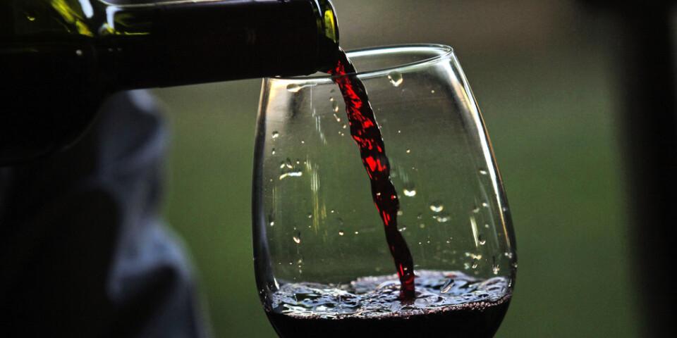Rött vin är bättre i glaset än i vattnet. Arkivbild.