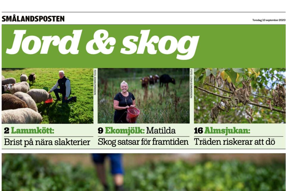 Börje Svensson gillar bilagan Jord & skog.