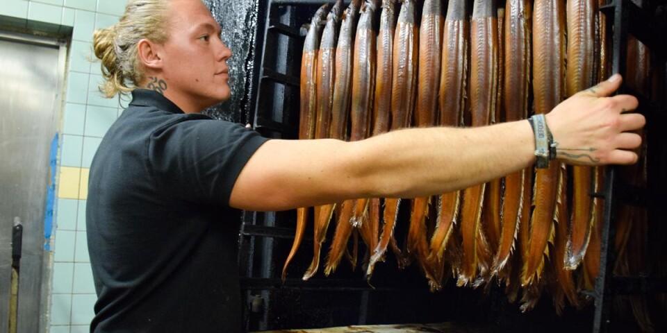 Jimmys son Sebastian är även han fast besluten att följa i pappas fotspår och jobba vidare i familjeföretaget. Här tittar han till den varmrökta ålen, som var den produkt som startade hela Kåseberga Fisk AB är 1968. Idag är företaget certifierat att röka även svenskodlad ål.